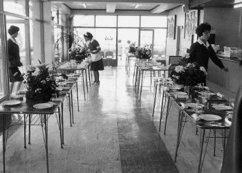 「金甲山レストハウス」オープン(1961[昭和36]年)