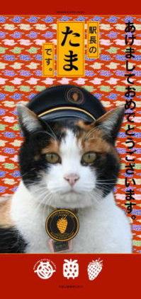 """「三毛猫""""たま""""を駅長に」"""