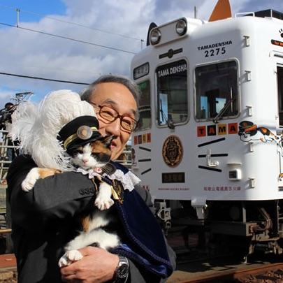 猫耳の付いたたま電車!