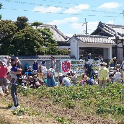 和歌山電鐵 貴志川線に乗ってじゃがいも堀り
